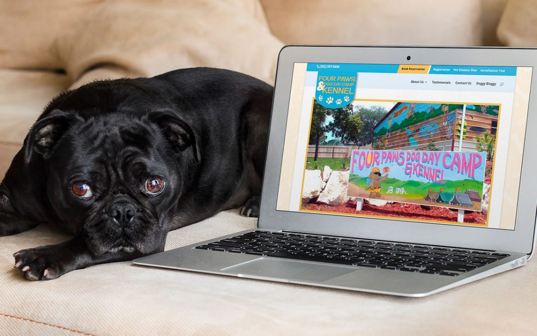 Dog Kennel in Brooksville Launches New Website